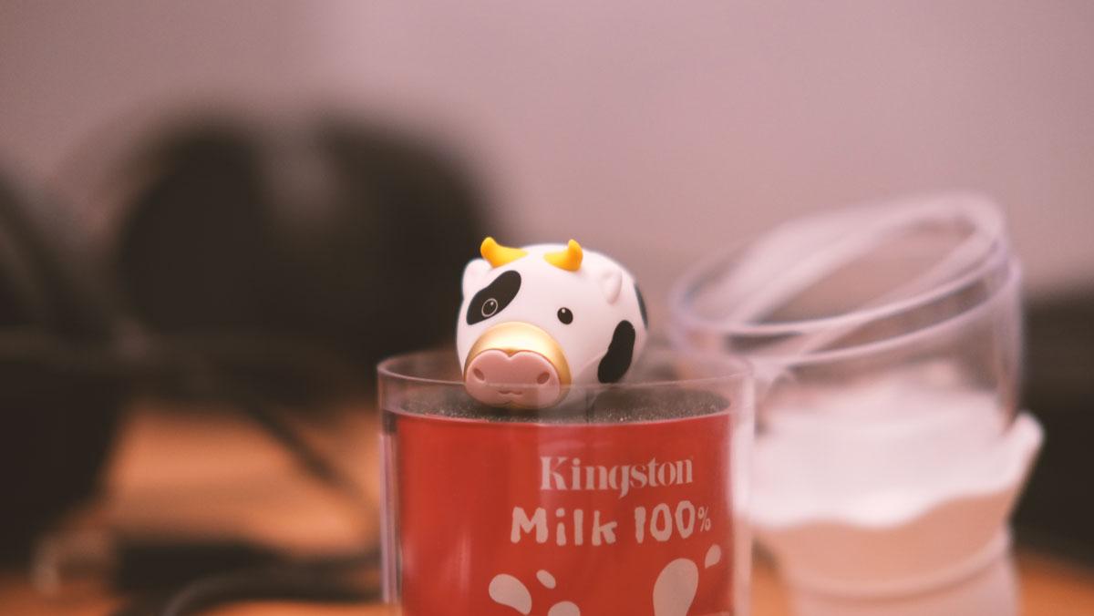 Review | 64GB Kingston 2021 Limited Edition Mini Cow USB Flash Drive