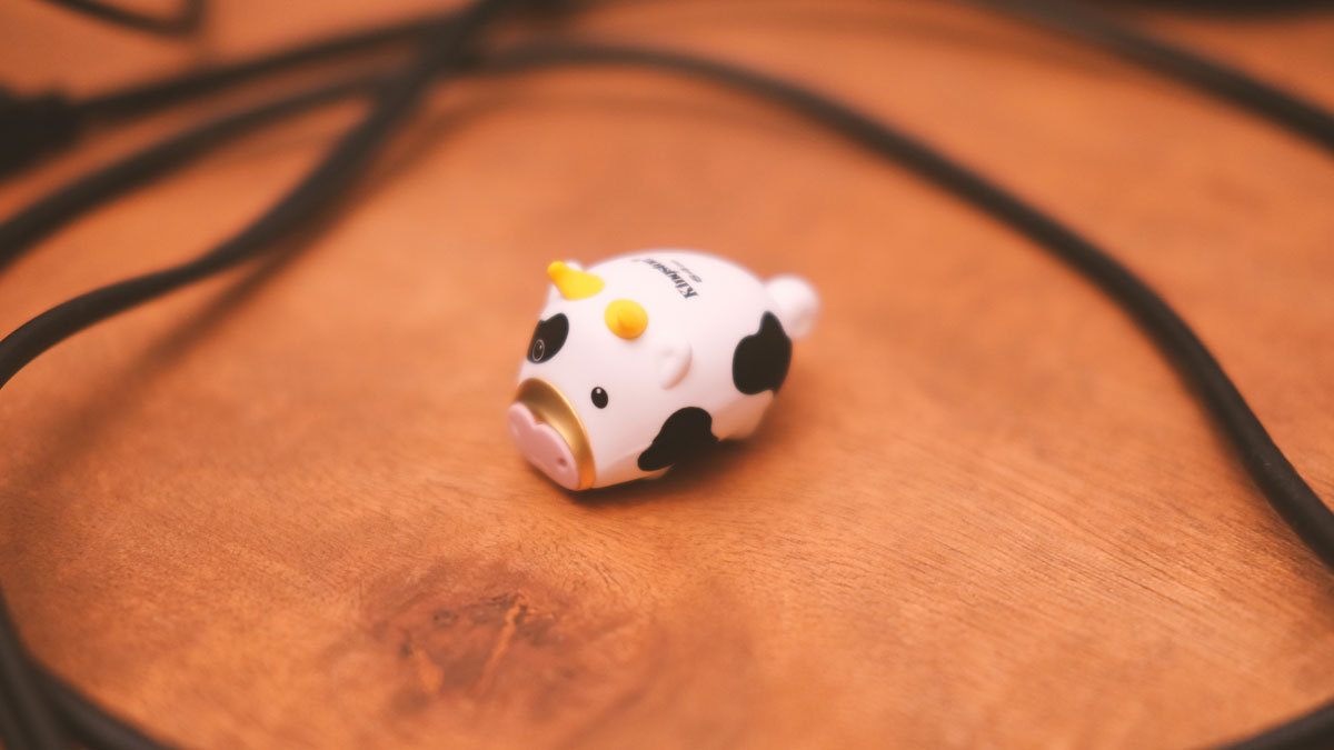 64GB Kingston Mini Cow Images 3
