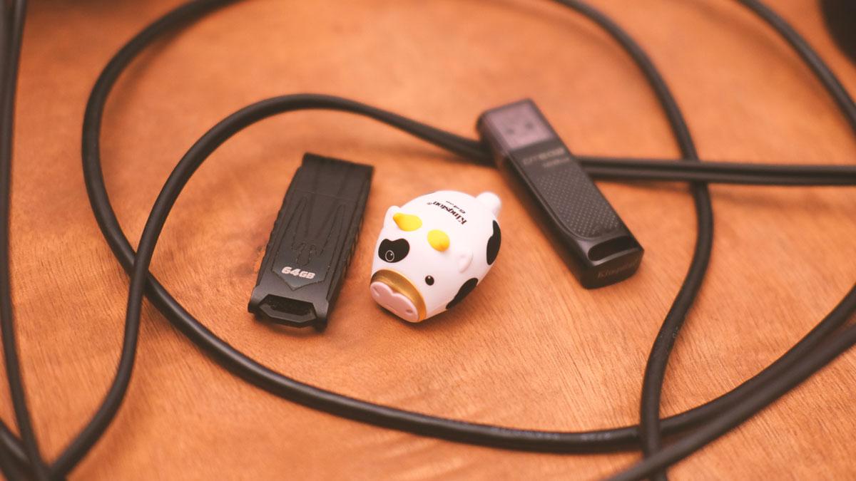 64GB Kingston Mini Cow Images 7