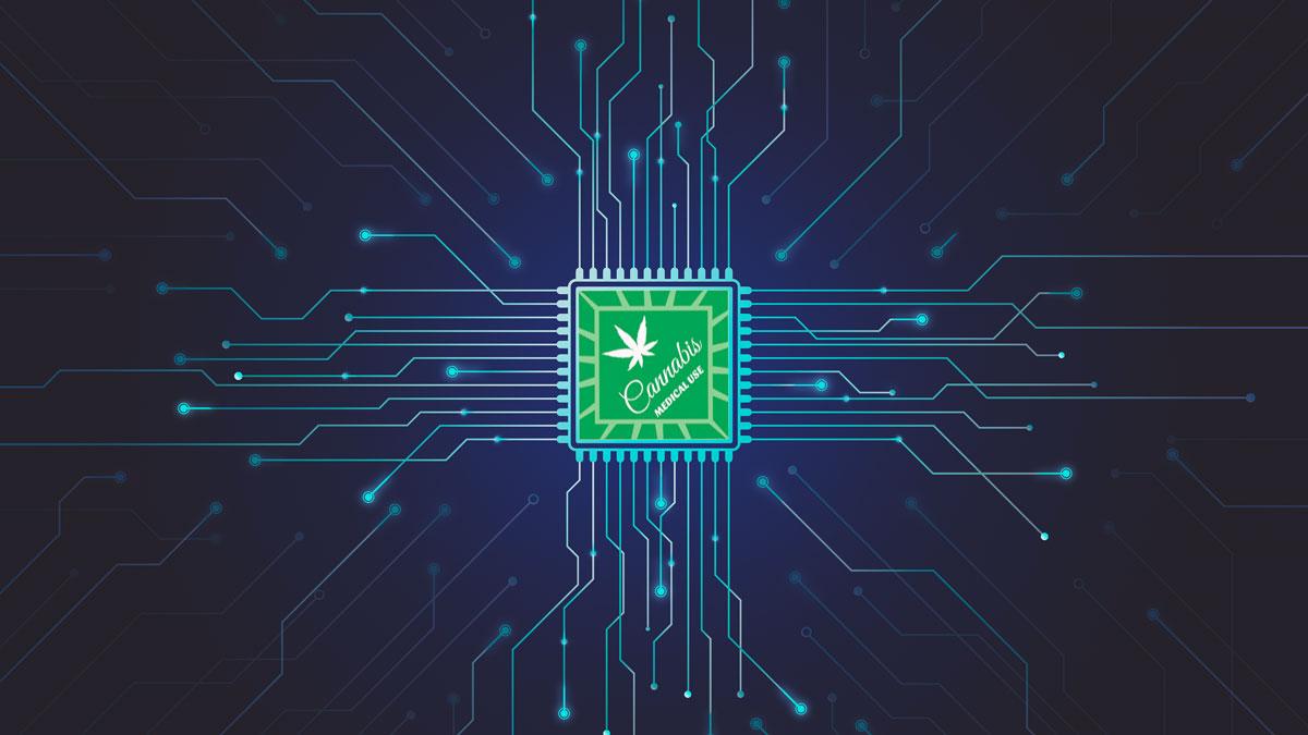 Technology Transformation in the Marijuana Industry