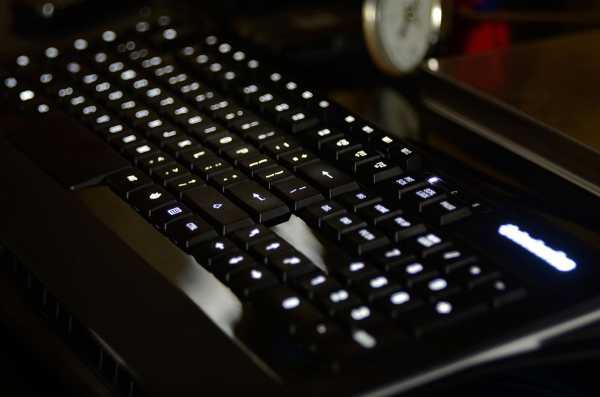 SteelSeries-APEX-RAW-Gaming-Keyboard-2